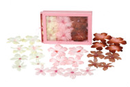 Flora Doodles Collection Peony Boxed Blend by Petaloo - Large - Brown Pink Cream - Pkg. of 24