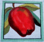 "Ann Wheat Pace 735D 4"" x 4"" Apple COASTER Pace 18 Mesh"