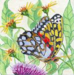 B311 Melissa Prince 6 x6 6 Butterfly 1