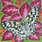 B312 Melissa Prince 6 x6 6 Butterfly 2