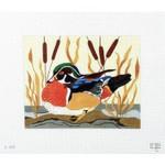 B319 Melissa Prince Wood Duck 10 x 8