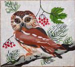 B369 Melissa Prince 9 x 8 Owl