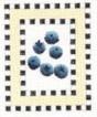 DENISE DeRUSHA DESIGNS DD-123 Blueberries 8 x 9 18 Mesh