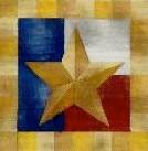 DENISE DeRUSHA DESIGNS DD-170 Texas Star 12 x 12 18 Mesh