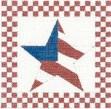 DENISE DeRUSHA DESIGNS DD-178 Flag Star 6 x 6 18 Mesh