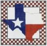 DENISE DeRUSHA DESIGNS DD-223 Texas OurTexas 8 x 8 18 Mesh