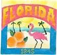 DENISE DeRUSHA DESIGNS DD-305 Florida Postcard 4 1/2 x 4 1/2 18 Mesh