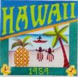 DENISE DeRUSHA DESIGNS DD-315 Hawaii Postcard 4 1/2 x 4 1/2 18 Mesh