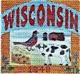 DENISE DeRUSHA DESIGNS DD-348 Wisconsin 4 1/2 x 4 1/2 18 Mesh
