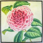 "KB 048 Kirk And Bradley Designs 13 Mesh Pink Camellia  8"" x 8"""
