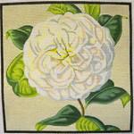 "KB 051 Kirk And Bradley Designs 13 Mesh White Camellia  8"" x 8"""