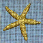 "#104 Starfish 18 Mesh - 4"" Square    Needle Crossings"