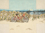 "#2151 Beachside Bicycle Brick Cover 13 Mesh 14"" x 10""  Needle Crossingsn"