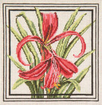 "214 Aztec Lily 13 Mesh - 10"" Square Needle Crossings"