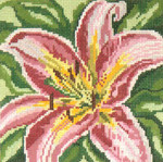 "213 Pink Lily 18 Mesh - 5"" Square Needle Crossings"