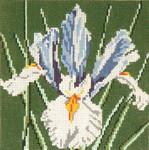 "212 Iris 18 Mesh - 5"" Square  Needle Crossings"