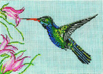 "1613 Broad Billed Hummingbird 18 Mesh - 7"" x 5"" Needle Crossings"