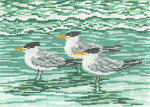 "1623 Royal Terns 18 Mesh - 7"" x 5""  Needle Crossings"