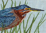 "1616-13 Green-Backed Heron 13 Mesh - 9-1/2"" x 7""  Needle Crossings"