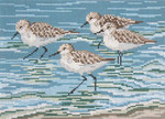 "1622-13 Sanderlings 13 Mesh - 9-1/2"" x 7""  Needle Crossings"