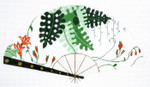 F800SKU Lee's Needle Arts Fronds w/ Orangeblossom Fan 18M 10in. x 5.5in.