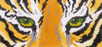 BB32SKU Lee's Needle Arts Tiger Eyes Hand-painted canvas - 18 Mesh 6in. X 2.75in.