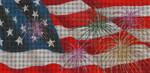BR75SKU Lee's Needle Arts Independence Day - Leigh Design Exclusive  Hand-painted canvas - 18 Mesh 2011 8.25in x 4in