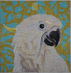AN114 Colors of Praise 13 Mesh Canvas White Parrot