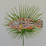 AN121 Colors of Praise  13 Mesh Canvas Spotted Fish on Palm