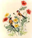 02-2634 European Goldfinches by Crossed Wing Collection
