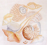 Anne Cram S-13 Shell Collage 14 Count