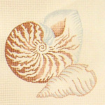 Anne Cram S-15 Small Nautilus 14 Count