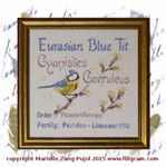F-EBT Eurasian Blue Tit Dinky-Dyes Filigree With Silk Pack