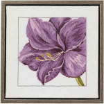 701152 Permin Lily