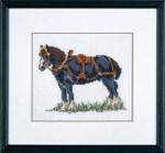 126424 Permin Kit Black Horse