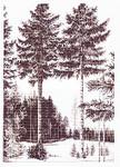703127 Permin Kit Trees