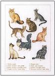 706402 Permin Kit Cats