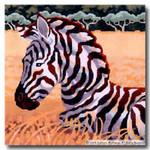 M-407 Squares: Zebra Foal 9 x 9 14 Mesh Shorebird Studio