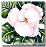 M-402 Squares: Magnolia 9 x 9 14 Mesh Shorebird Studio