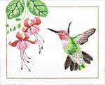 M-398 Anna's Hummingbird 10 x  8 18 Mesh Shorebird Studio