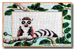 M-310 Ring-tailed Lemur 18 x 11.75 13 Mesh Shorebird Studio
