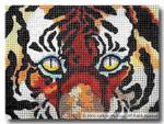 M-337 Tiger Eyes 7 x 5 18 Mesh Shorebird Studio