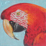AN323 Red parrot 6x6 18 Mesh  Colors of Praise