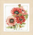 PN157496 Lanarte Kit Anemone Bouquet  by Marjolein Bastin