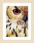 PN157518 Lanarte Kit Owl - Linen