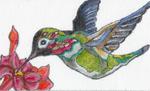 "B301 Melissa Prince 7 x4.25"" Hummingbird"