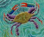614 Blue Swimmer 9 x 11 18 Mesh Purple Palm