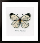 PNV165233 Vervaco Kit White Butterfly