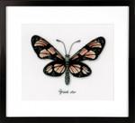 PNV165401 Vervaco Kit Orange Butterfly