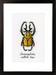 PNV165220 Vervaco Kit Golden Beetle
